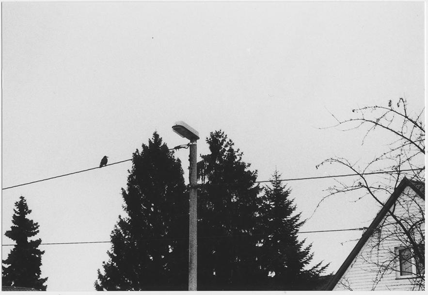 foto_a4
